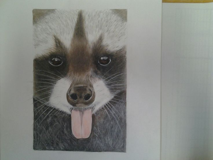 You just have to love this guy ... pastels and prisma colored pencils