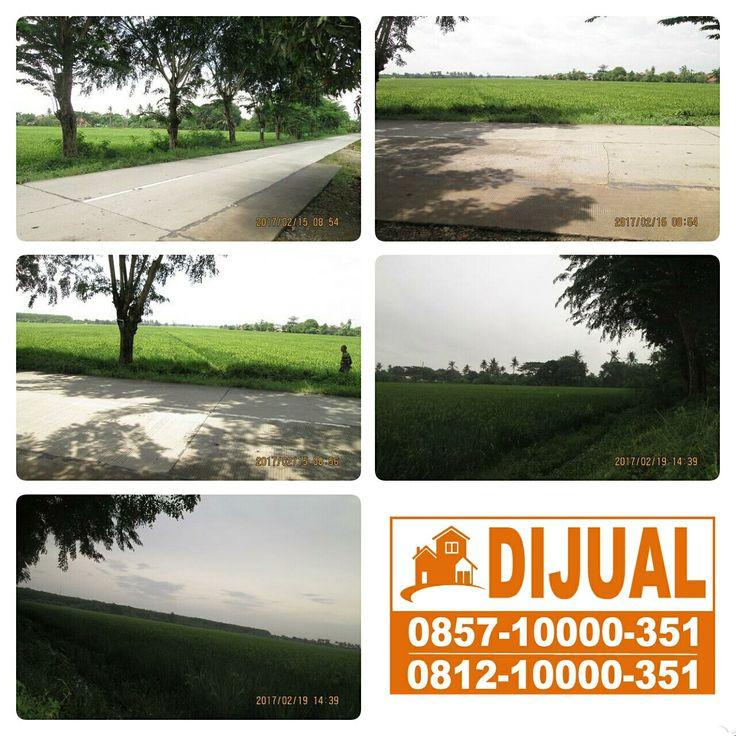 Tanah Sawah Lokasi Super strategis di Kutawaluya Karawang