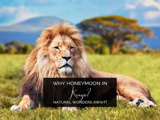 Honeymoon in Kenya