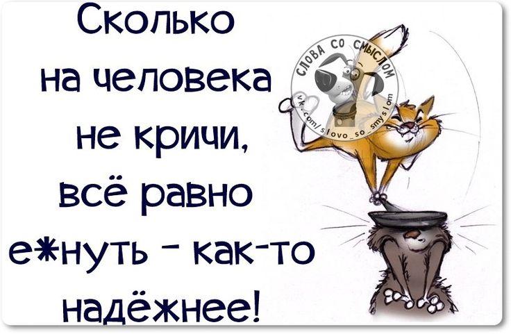 QnzymyMIa_E.jpg (817×534)