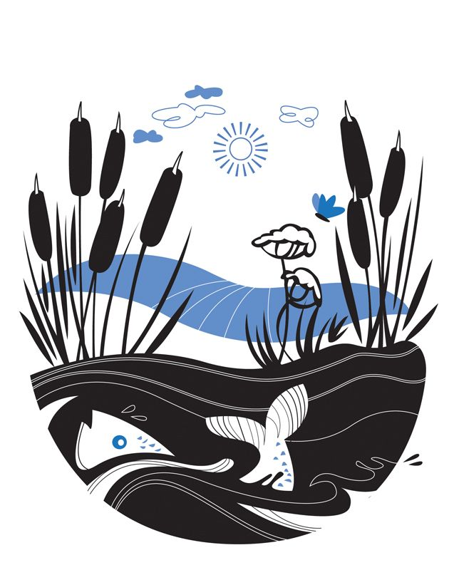 #joannakerr #newdivision #illustration #flatgraphic #line  #decorative #fish #nature
