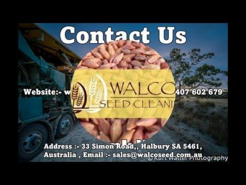 http://www.walcoseed.com.au/ - Extensive #SeedCleaning Gladstone - YouTube