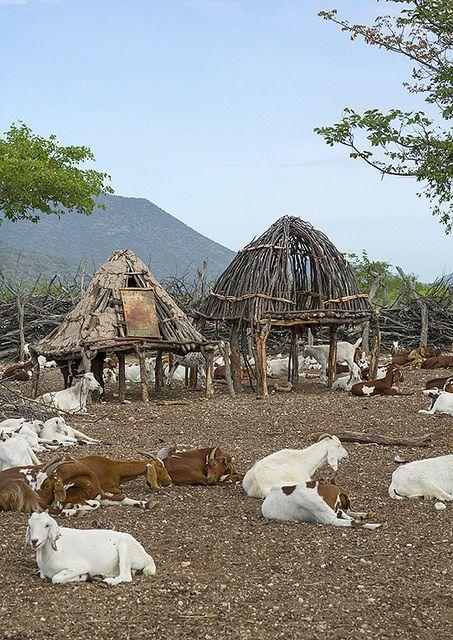 Traditional Himba Village . Epupa, Namibia