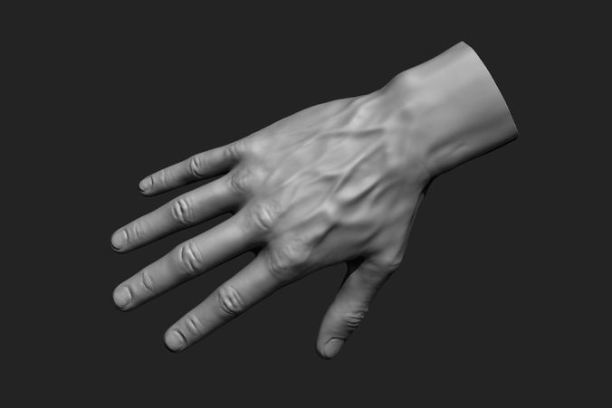 Male Hands 12 Poses 3d Model Male Hands Hand Reference Hand Pose