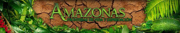 Amazonas, fronteras de vida y depredación - El Colombiano - El Colombiano http://www.elcolombiano.com/amazonas-fronteras-de-vida-y-depredacion.asp