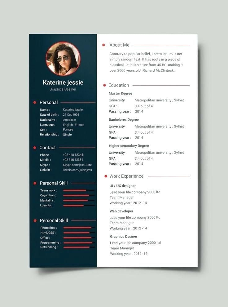 Professional Resume Samples Free Best Resume Format Template Free