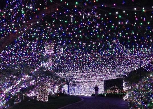Decorating Celebrity Homes Interior Pictures Of Houses With Christmas Lights Porch Decorating Ideas For Christmas 537x383 Cheap Modern Home Decor Christmas House Lights