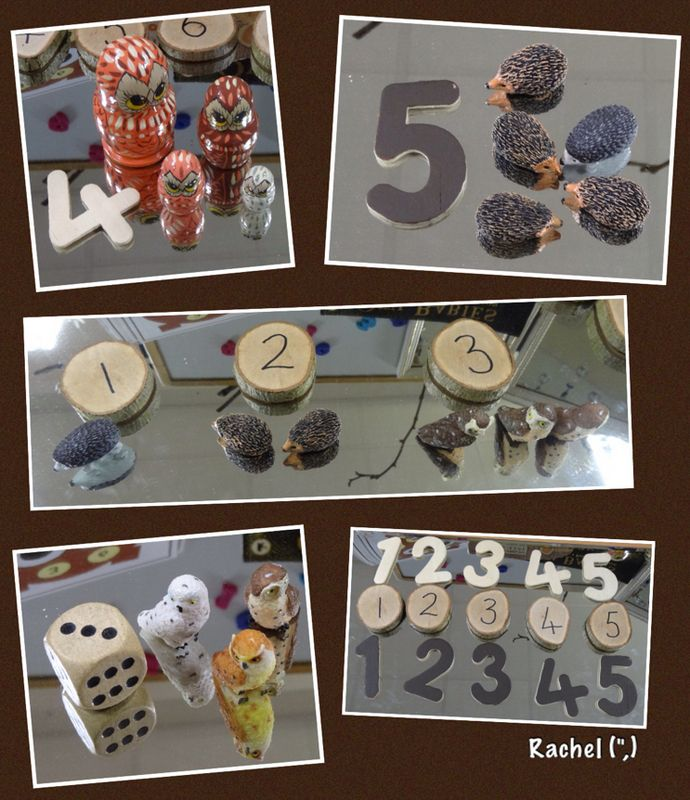 """Number exploration with hedgehogs and owls - from Rachel ("""",)"""
