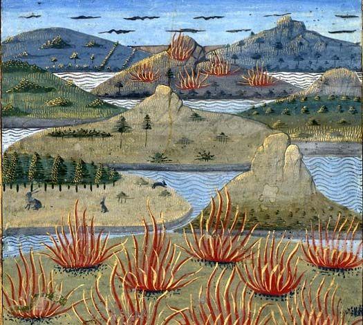Les secrets de l'histoire naturelle