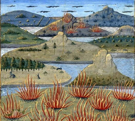 """Îles Éoliennes (f°19v -- «Secrets de l'histoire naturelle», enluminé par Robinet Testard, Cognac (France), vers 1480-1485 [BNR Ms Fr 22971]-- Mandragore, search by """"cote"""" (Français 22971)"""