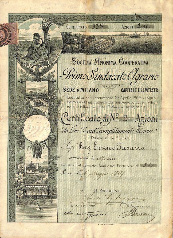 PRIMO SINDACATO AGRARIO SOC. AN. COOP. - #scripomarket #scriposigns #scripofilia #scripophily #finanza #finance #collezionismo #collectibles #arte #art #scripoart #scripoarte #borsa #stock #azioni #bonds #obbligazioni