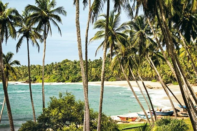 Beach at Amanwella, near Tangalle in Sri Lanka.
