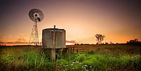 Qld, Darling Downs - Images | Dan Proud Photography