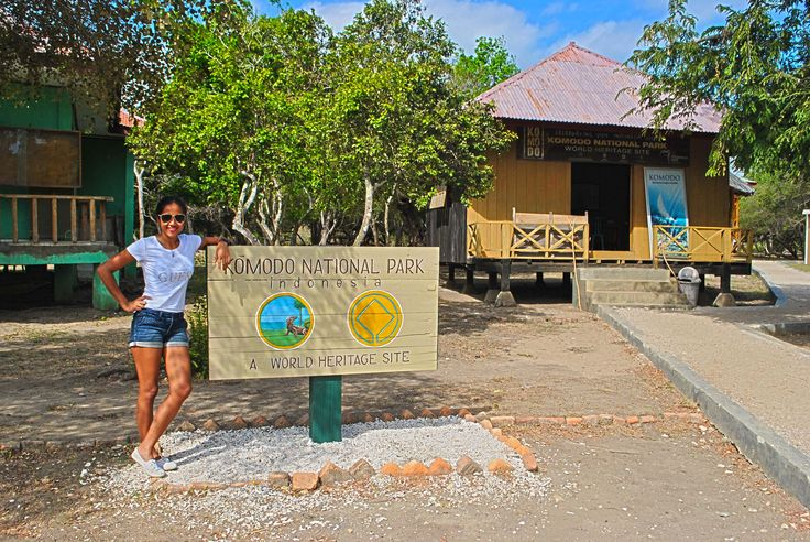 looking for Giant Lizard in Komodo Island