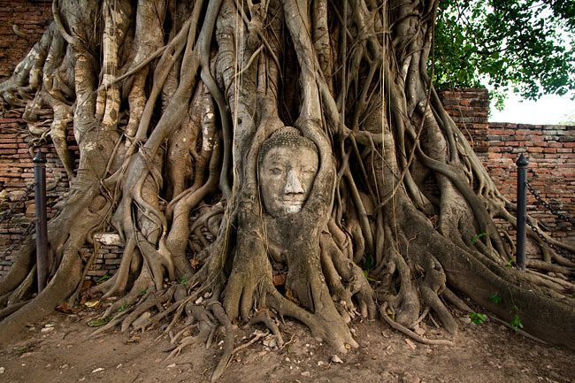 Ayutthaya inThailand