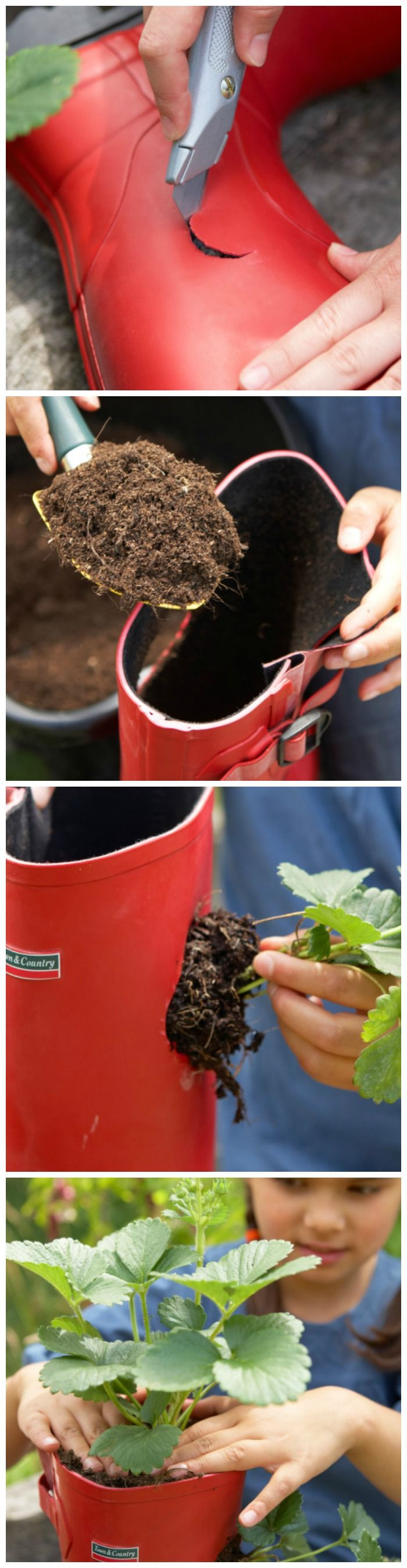 Fun Family Gardening Project: DIY Strawberry Rain Boot Planter --> http://www.hgtvgardens.com/family-gardening/diy-strawberry-planter?soc=pinterest