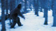 The Himalaya's mysterious Abominable Snowman might harbor an even deeper mystery, according to an Oxford University geneticist who says he has sequenced the mythic beast's DNA and proved its existence.