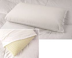 Premium Natural Latex Foam Pillow | Overstock.com Shopping - Great Deals on National Sleep Products Pillows