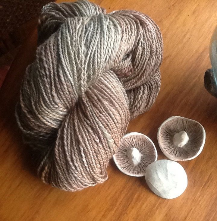 This is beautiful combed merino, dyed while staying with my sister Sue in Roxburgh