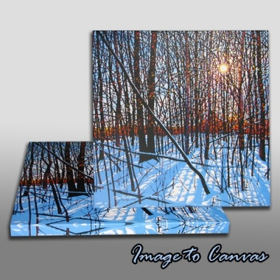 Image To Canvas #imagetocanvas #image #canvas