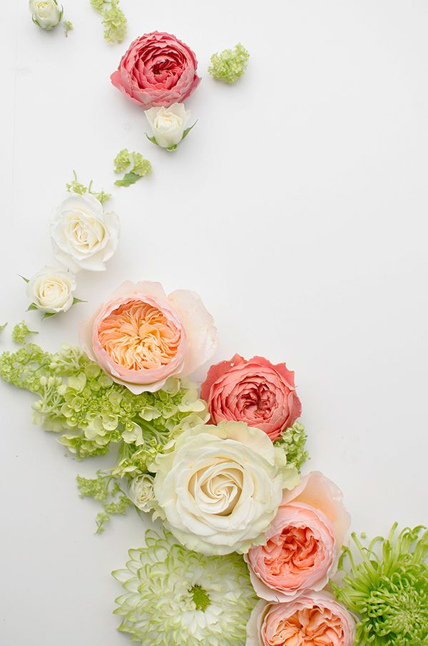 Gorgeous colors in this pink and green palette