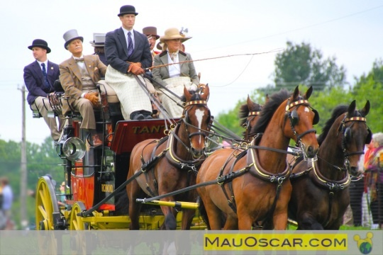 Winterthur Point to Point: O maior desfile de carruagens históricas dos EUA #Winterthur #Delaware #ptp #PointtoPoint