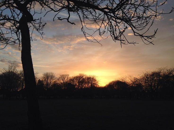 #sunsetinpark #lovenature