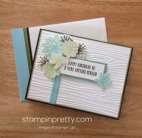 Inspired By Color & Oh So Succulent Stamp Set – Mary Gilliland