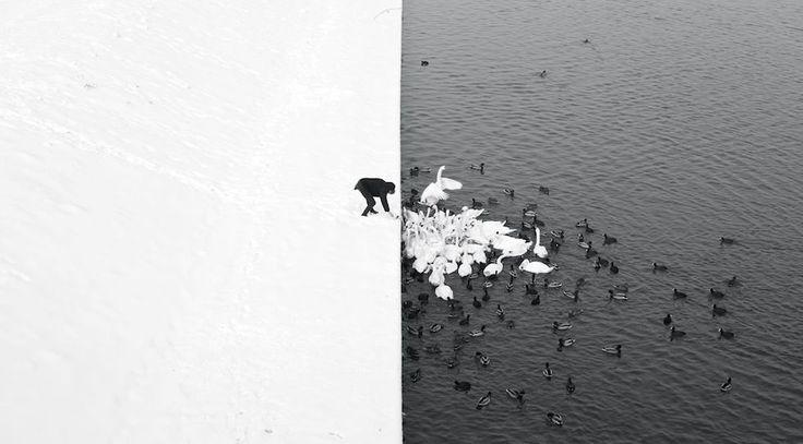 Le foto vincitrici del Siena International Photo Awards - Il Post