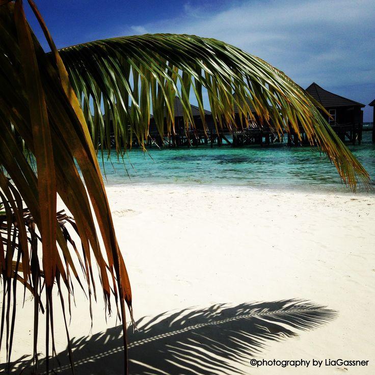 Kuredu, Malediven  ©photography by LiaGassner