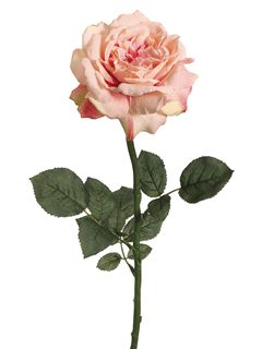 Soft Pink Open Rose. Create your Vintage & Garden Wedding Bouquets & Centerpieces. To view our lovely selection of Pink Roses:  http://www.afloral.com/Silk-Flowers-Artificial-Flowers-Fake-Flowers?search=pink+rose #pinkrose #pinkwedding #vintagepinkwedding #pinkbouquet #pinkbridalbouquet