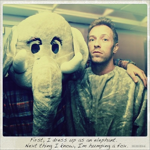 Humping a fox, eh?: Chris Martin, Funny Stuff, Stormy Night