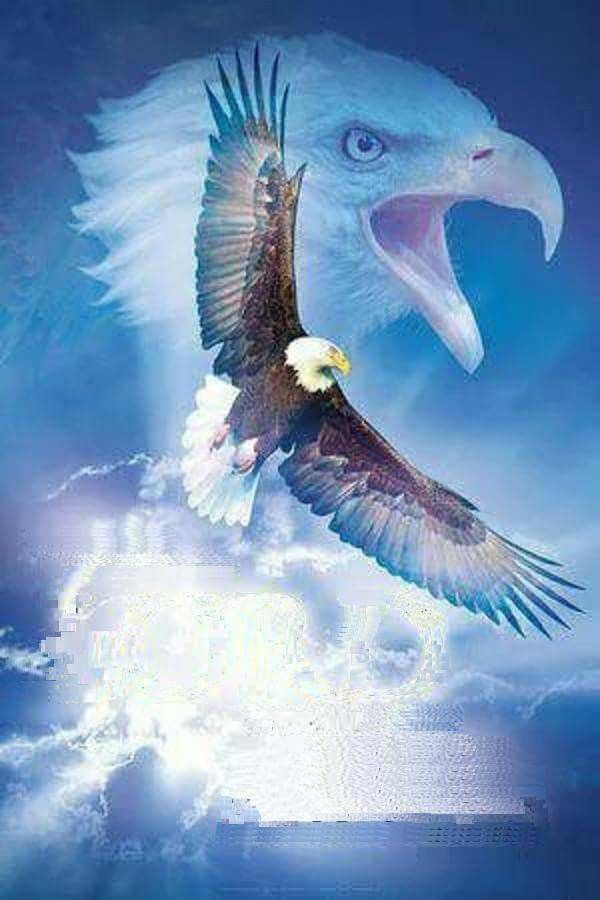 Soar on eagle's wings
