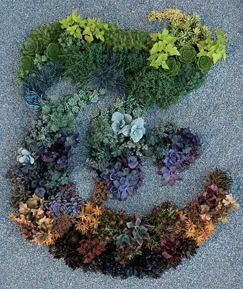 "Garden designer Judy Kameon created this ""T"" for New York Times' T Magazine using 130 plants."
