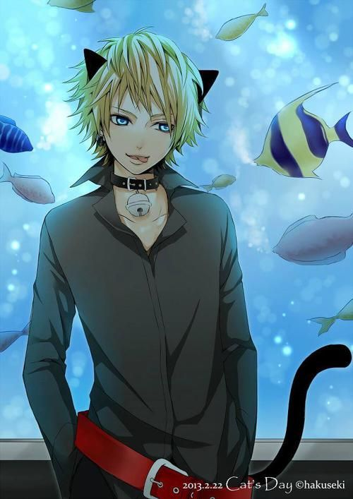 neko boy - Google Search