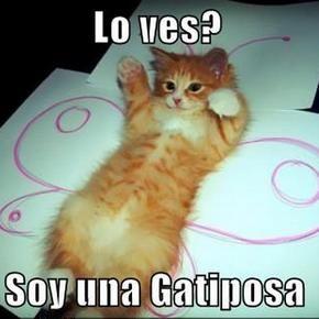 Miáucoles: Lolcats en español: Gatiposa