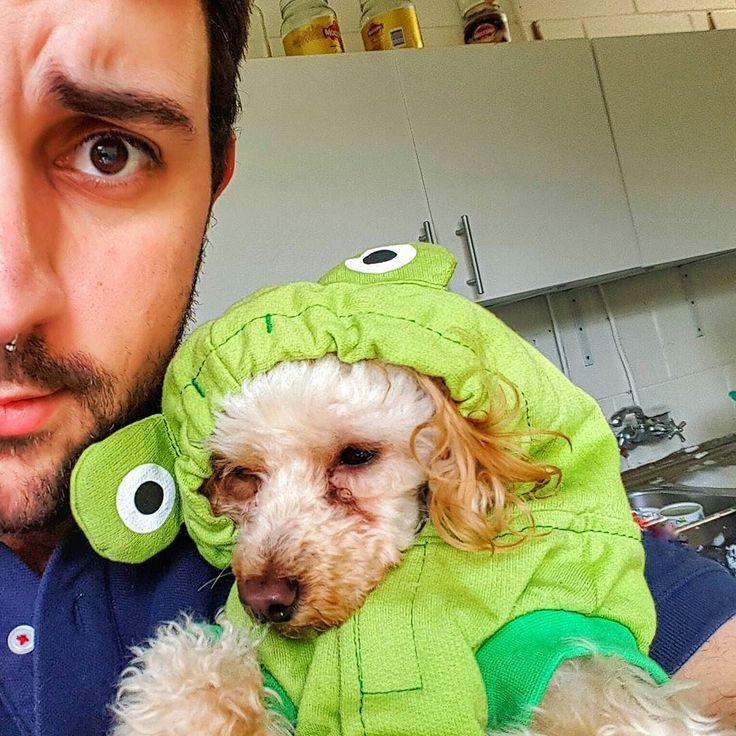 Froggy dog .      #brisbane #australia #poodle #selfie #communism #garden #gaybrisbane #gayaustralia #septum #gayusa #scruff #barba #beard #coffee #hairy #vscocam #vsco #coffee #nature #gaymexico #gaychile #gayeurope #dog #gayargentina #puppy #gaybeard #bringtheboystogether