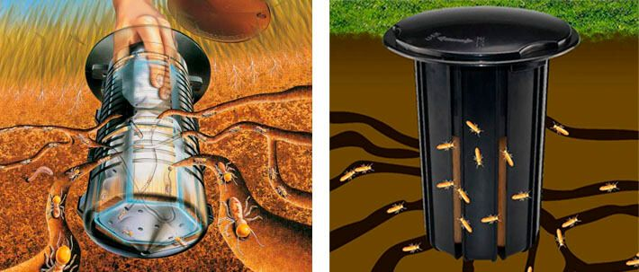 Termite Baits and Termite Baiting considerations; how to place out termite bait stations.Termite bait stations