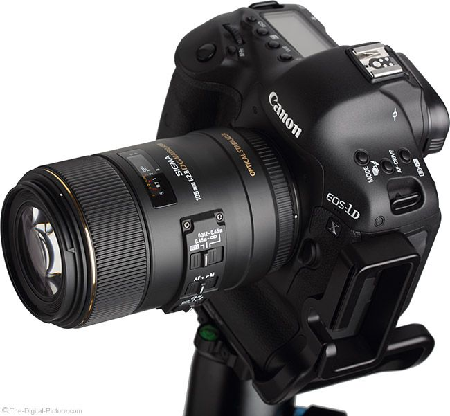 Sigma 105mm f/2.8 EX DG OS HSM Macro Lens Angle View
