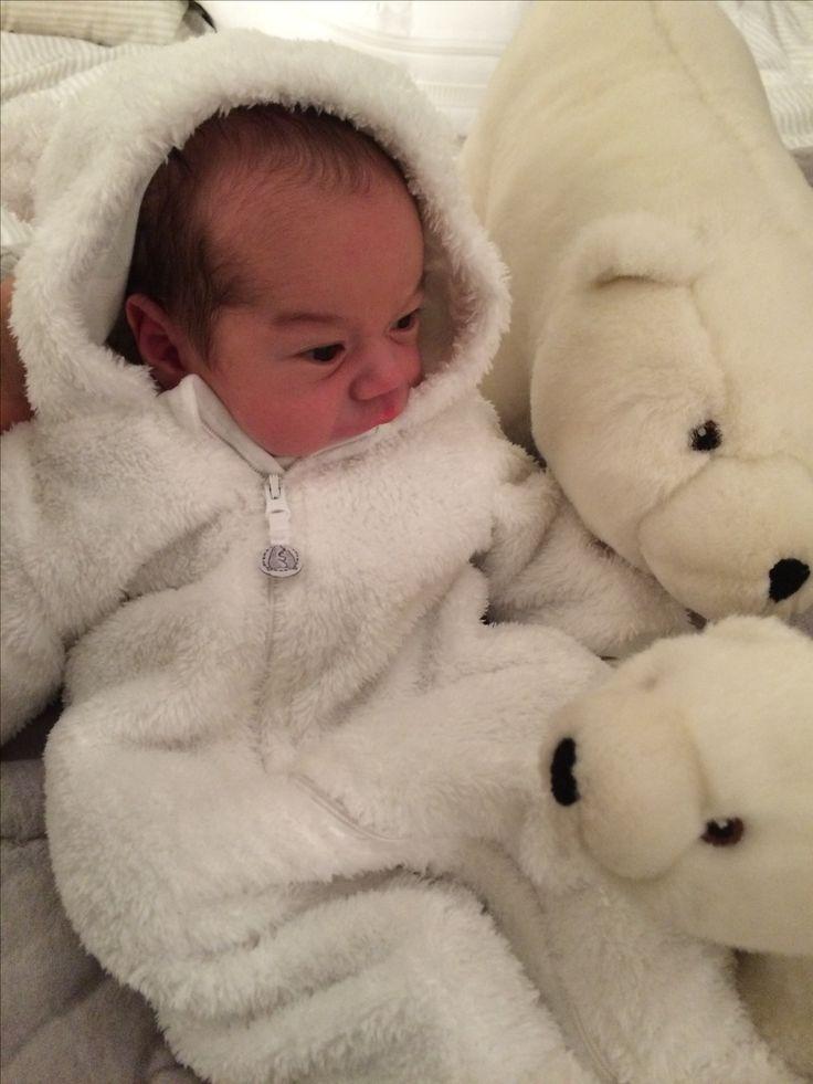 Baby polo bear!