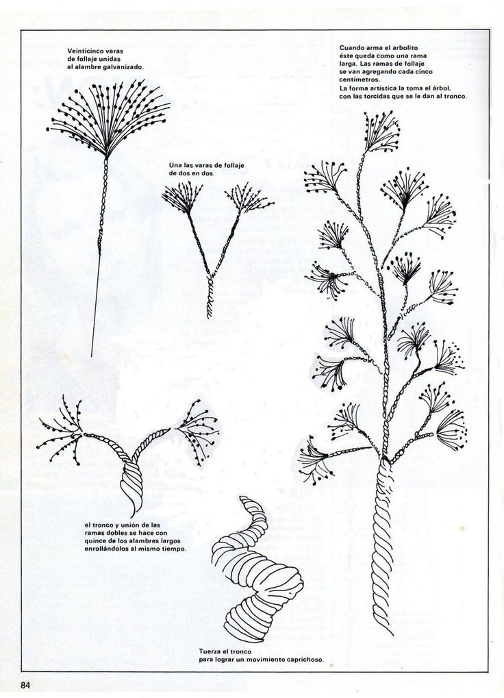 image result for bonsai de mostacillas