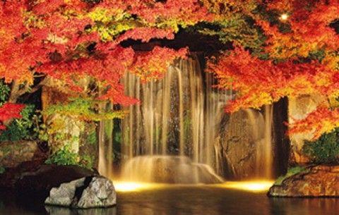 いよいよ秋本番!紅葉シーズンまっただ中。今年は秋の紅葉狩りを満喫するのはいかが?今回は大阪・兵庫からアクセス楽々な紅葉名所をあつめました!白い水しぶきと紅葉の共演が圧巻な箕面大滝や、多彩なイベントが楽しめる神戸市立須磨離宮公園など、幅広くご紹介。あなたが行きたい紅葉名所がきっと見つかるはず!この週末は紅葉名所におでかけして、秋を思い切り楽しみましょう♪