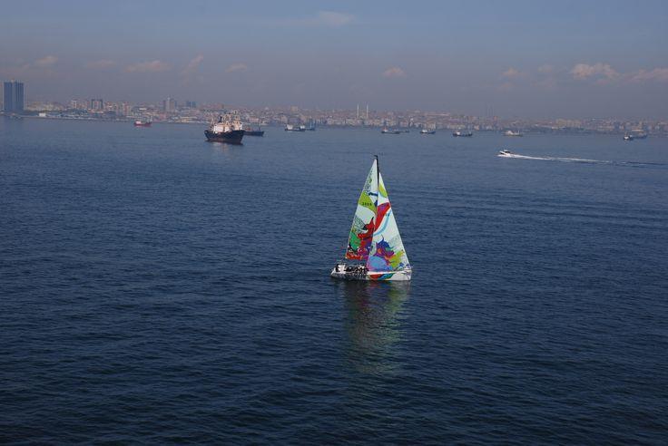 Sail painting 2008