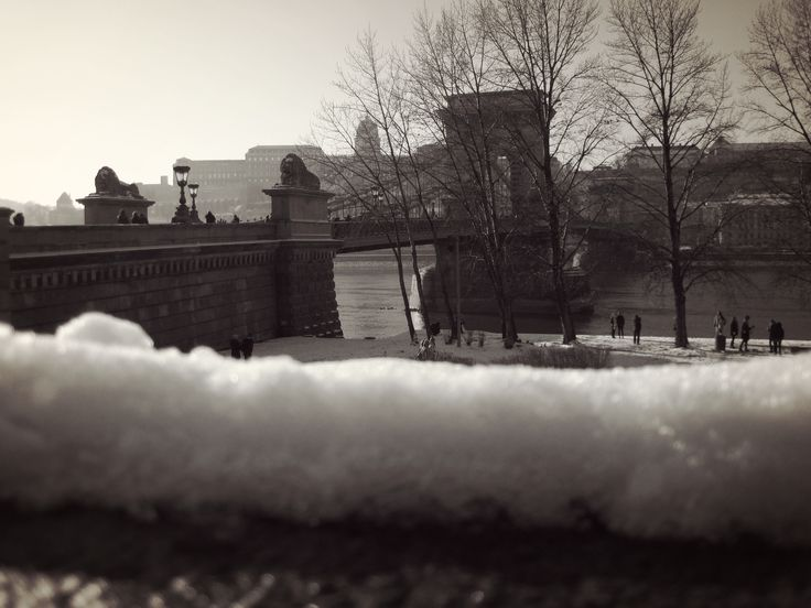 Photo by me. Photo: Diána Rigó #Budapest, V. ker. - in the #winter of 2016 #Hungary  #photography #snow - The Széchenyi Chain Bridge