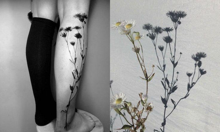 Les tatouages d'ombres de plantes de Tedd Hucks - https://www.2tout2rien.fr/les-tatouages-dombres-de-plantes-de-tedd-hucks/