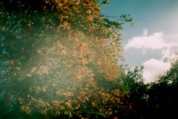 Ghost of Autumn.