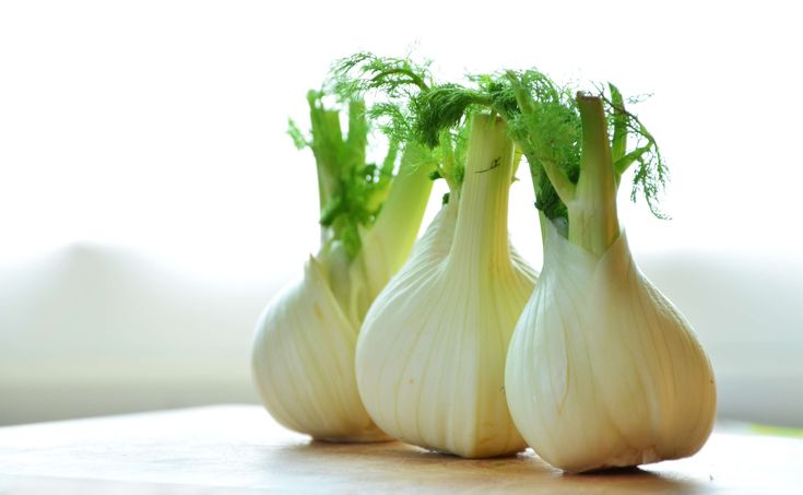 #close up #fennel #fennel bulb #food #ingredients #onion #vegetable #public domain images