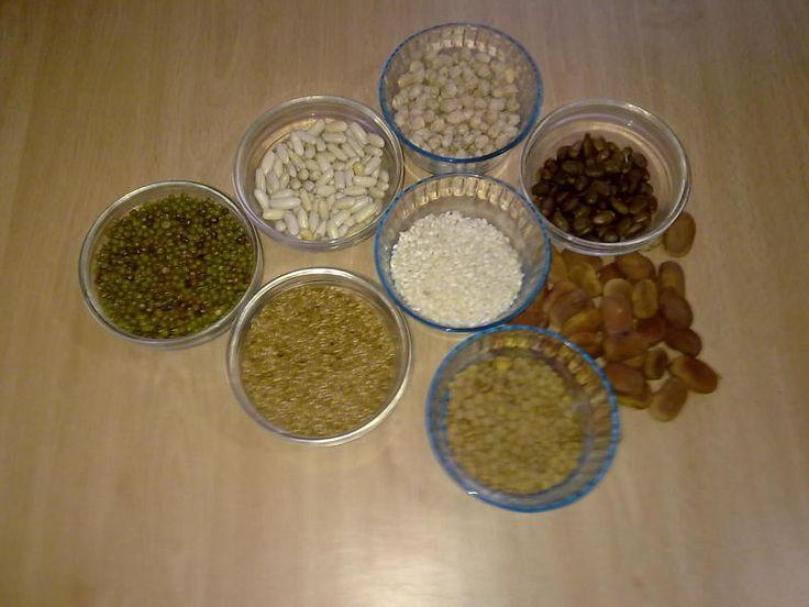 Cómo hacer una bolsa térmica de semillas | Ahorrar en tiempos de Crisis