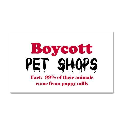 What do you think about Pet stores?