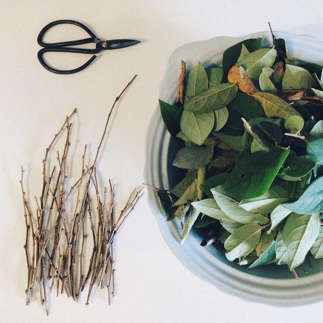 Casting Nature – Christina Lowry